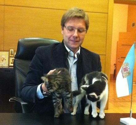 Rīgas kaķi